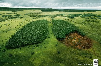 WWF_Deforestation